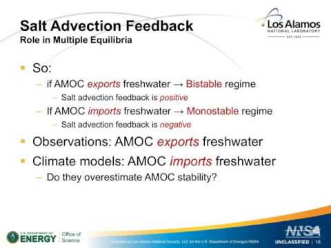 US AMOC: Salt advection feedback in eddying models