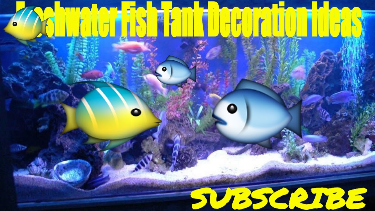 Freshwater fish tank decoration ideas youtube for Aquarium decoration ideas freshwater