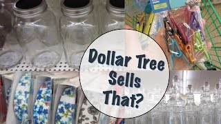 Dollar Tree Shopping! | New Products & Haul