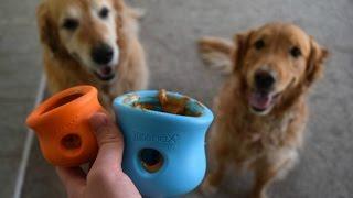 West Paw Design's Toppl Dog Toy Review - MyDogLikes