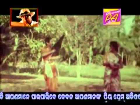 Roopa nani lo  Jahaku Rakhibe Ananta Oriya Movies) - MP4 360p