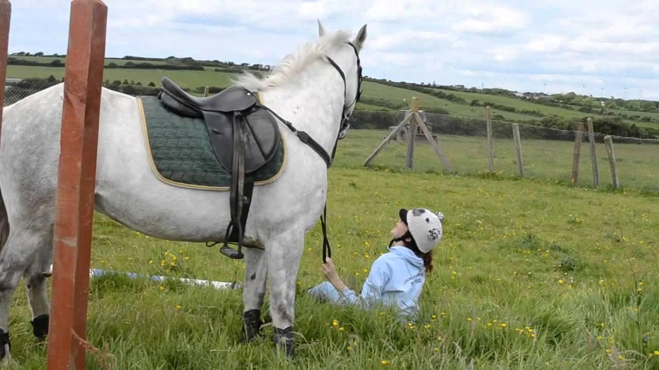 vallen van het paard - YouTube