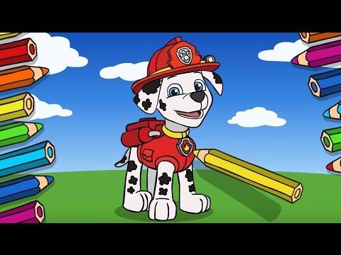 Как зовут всех щенков из мультфильма Щенячий патруль?