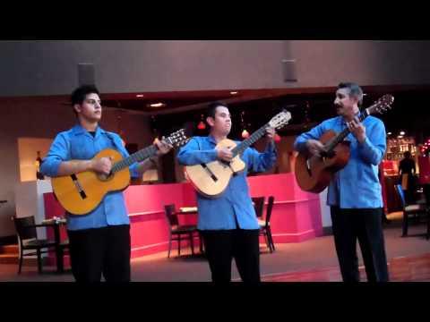 Cucurrucucu Paloma Mexican Trio Music