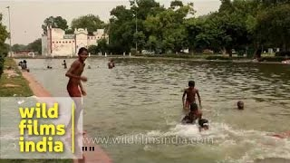 Young boys swim and perform for the camera, Delhi