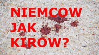 NIEMCOW JAK KIROW?
