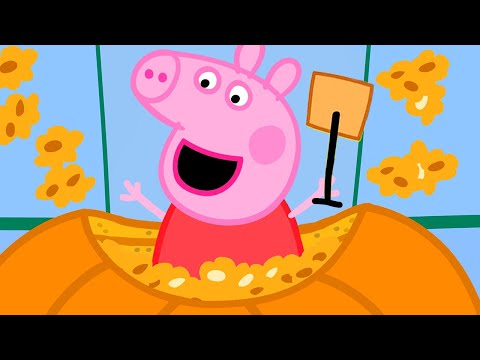 Peppa Pig Full Episodes   Pumpkin Competition   Cartoons For Children