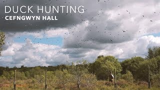 Duck Hunting at Cefngwyn Hall