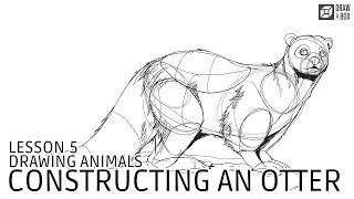 Drawabox Lesson 5, Drawing Animals: Constructing an Otter