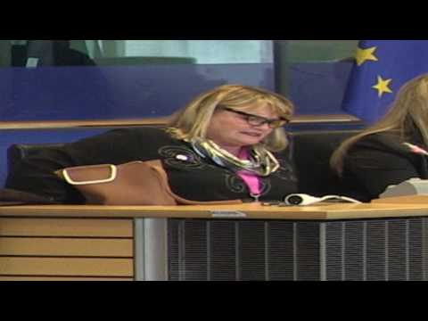 Soraya Post MEP - S&D Human Rights Committee Coordinator