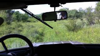 Selenge Jeep Drive