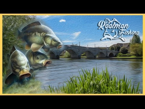 River Thames Carp Fishing 2018