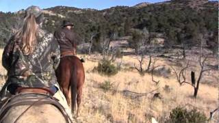 Hunting Mountain Lions in New Mexico