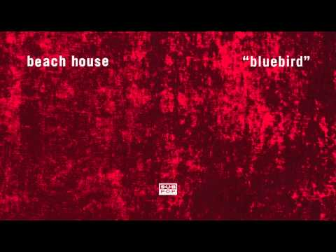 Beach House - Bluebird
