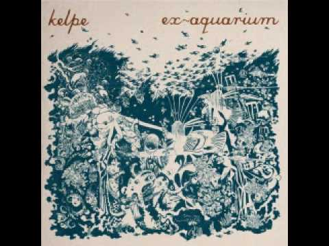 Shipwreck Glue -- Kelpe