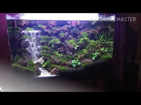Aquascape Sandfall/waterfall with stone clif in tank 60x35x35cm