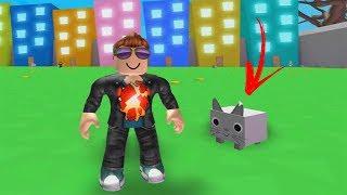 ROBLOX: THE OLD MAN HAS A NEW PET!! (Simulateur de pet)