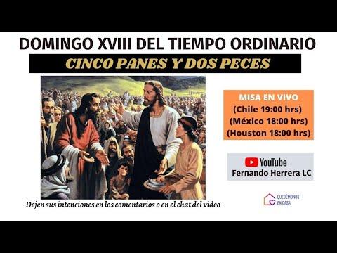 Misa en vivo domingo 2 de agosto