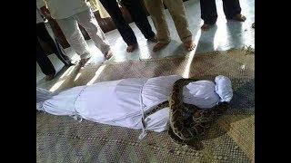 Kisah nyata,,, jenazah dililit ular besar