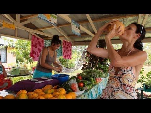 Around Rarotonga The Cook Islands Travel Video