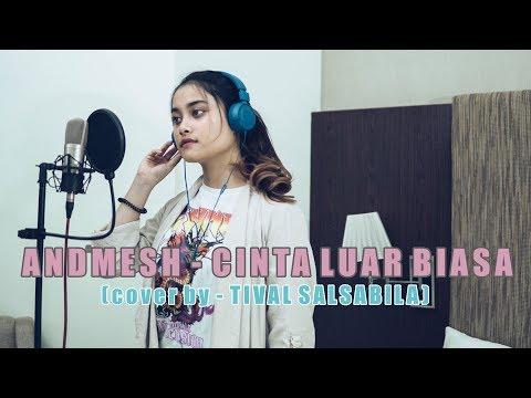 ANDMESH - CINTA LUAR BIASA ( Cover By TIVAL SALSABILA )