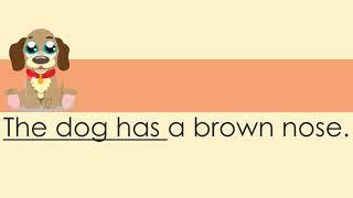 Simple Sentences-Reading Comprehension (The Dog)