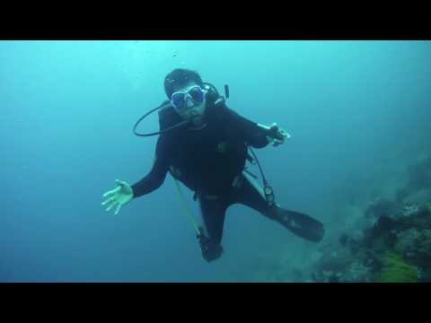 Wailau diving