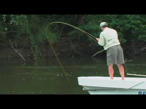Belize River Lodge - Bow To The Silver King Tarpon