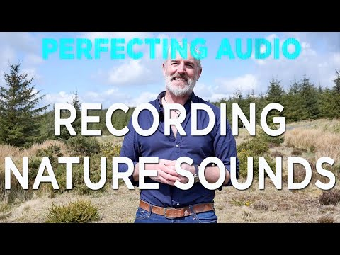 Recording Nature Sound Effects: Perfecting Audio With Keith Alexander