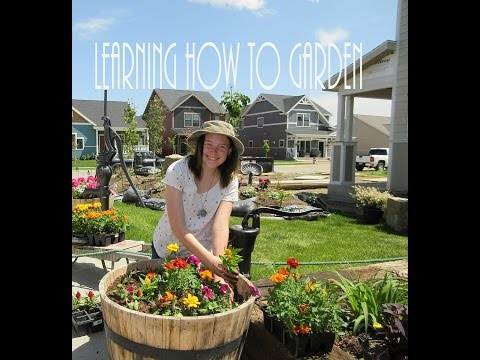 Learning How To Garden