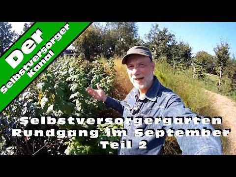 Selbstversorgergarten Rundgang im September Teil 2