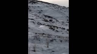 Crazy sledding up ice fishing