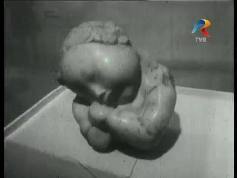 Muzeele lumii - Constantin Brancusi