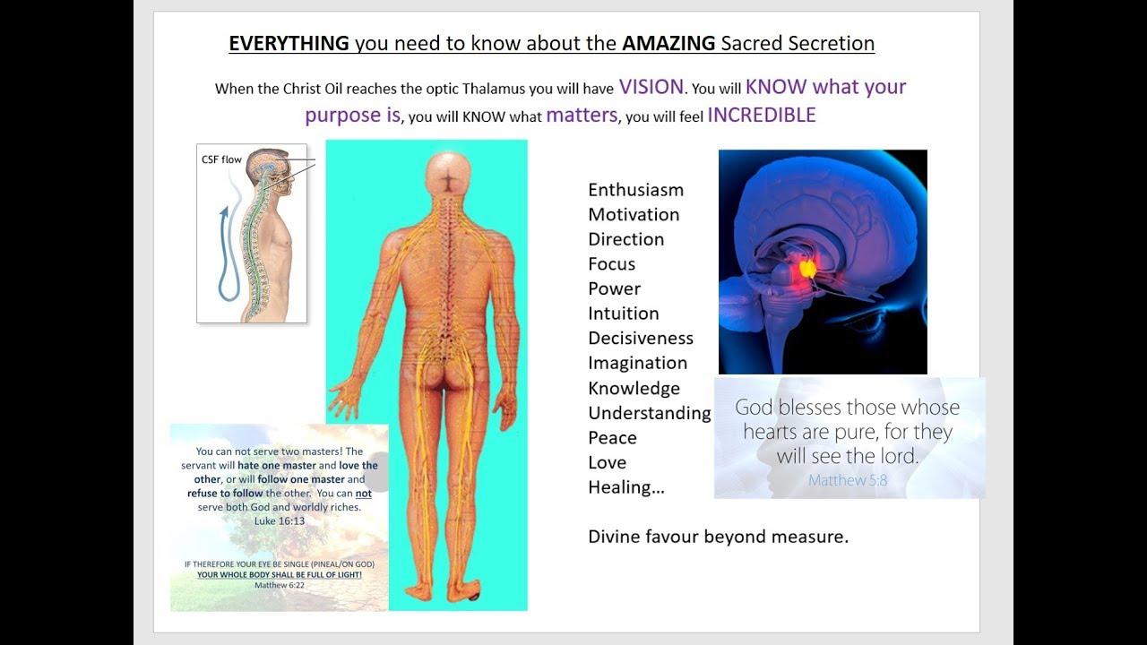 Sacred Secretion / Christ Oil / True Anointing - HEAVEN ON EARTH