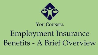 Employment Insurance Benefits - A Brief Overview