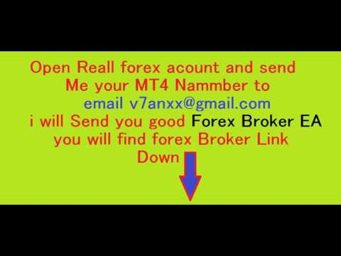forex-ea-robot-earn-100%-auto-forex-trading-with-good-forex-expert