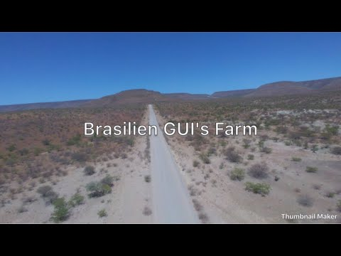South America, Brazil, Goias, Travel the World, Gui`s Farm