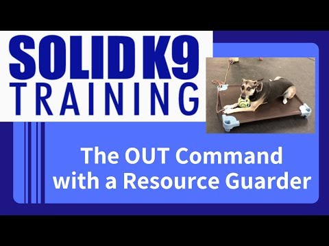The OUT Command with a Severe Resource Guarder | Solid K9 Training