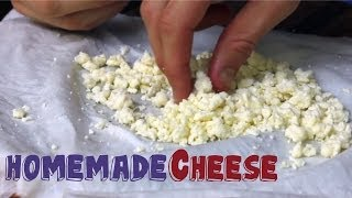 cheese homemade
