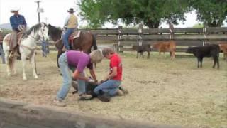 Cattle Branding 4-18-2010