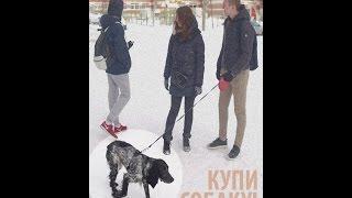 """Короткометражный фильм """"Купи собаку!"""" (2017)"""