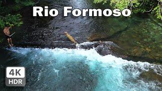 TERRA INDÍGENA RIO FORMOSO