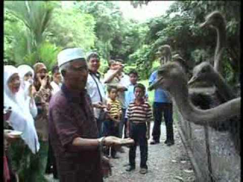 Tourism Malaysia - Cuti-Cuti Malaysia Song