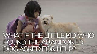 What If A little Kid Who Found The Abandoned Dog Asked For Help?  ENG SUB • dingo kdrama