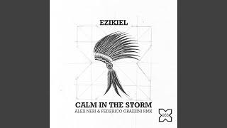Calm in the Storm (Alex Neri & Federico Grazzini Remix)