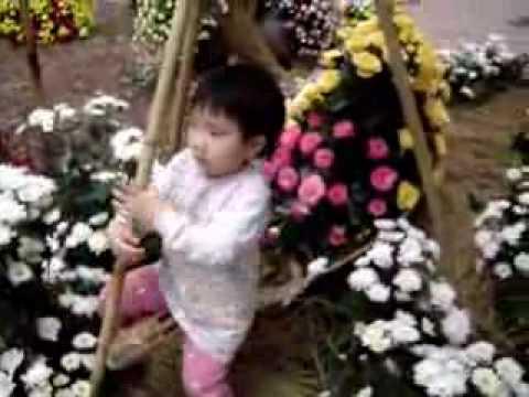 Hen ngoi thuyen hoa