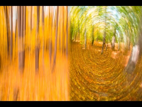 CREATIVE PHOTOGRAPHY TIPS – Camera Motion Blur Effects