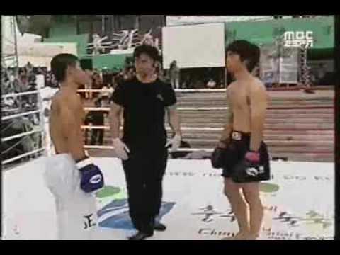 Perfect Taekwondo kick and K.O.