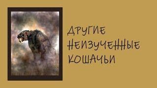 Неизвестные Животные Планеты Земля 070 - Другие Неизученные Кошачьи
