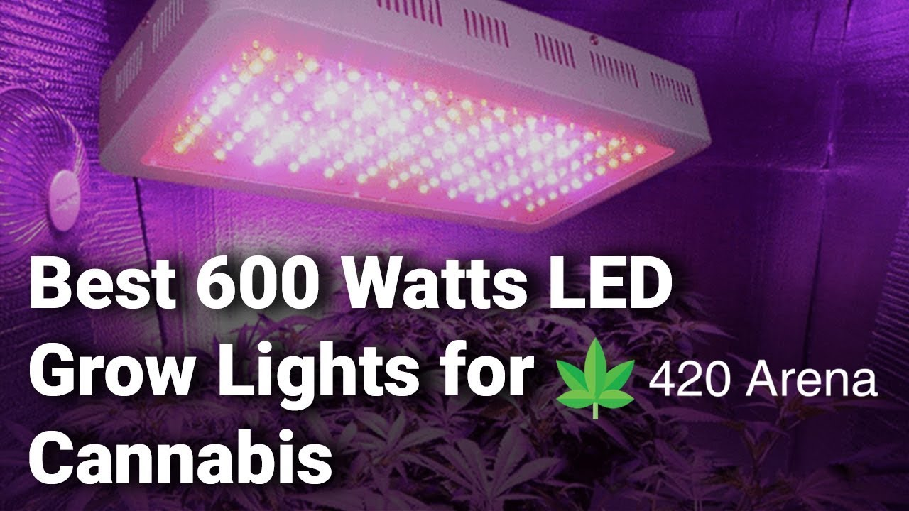 600Watt Double Chips Full Spectrum Plant Lamp with Red Blu... JS LED Grow Light